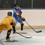 California Golden Seals vs Quebec Nordiques Bermuda Ball Hockey, January 21 2015-72
