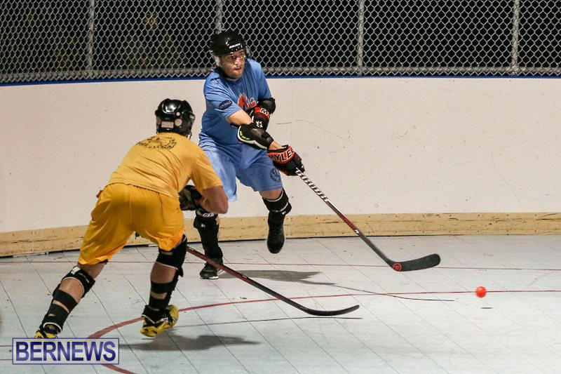 California-Golden-Seals-vs-Quebec-Nordiques-Bermuda-Ball-Hockey-January-21-2015-72