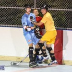 California Golden Seals vs Quebec Nordiques Bermuda Ball Hockey, January 21 2015-73