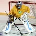 California Golden Seals vs Quebec Nordiques Bermuda Ball Hockey, January 21 2015-74