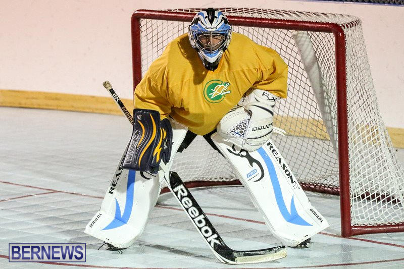 California-Golden-Seals-vs-Quebec-Nordiques-Bermuda-Ball-Hockey-January-21-2015-74