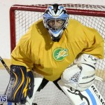 California Golden Seals vs Quebec Nordiques Bermuda Ball Hockey, January 21 2015-75