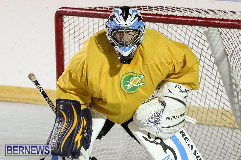 California-Golden-Seals-vs-Quebec-Nordiques-Bermuda-Ball-Hockey-January-21-2015-75