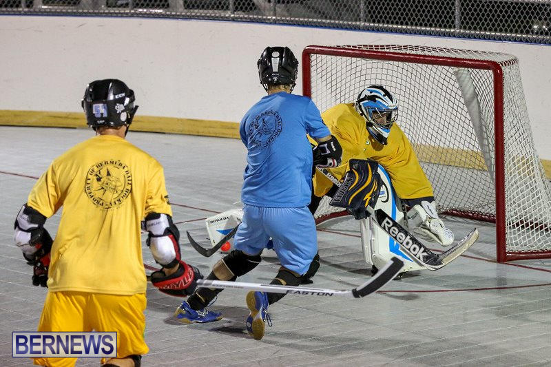 California-Golden-Seals-vs-Quebec-Nordiques-Bermuda-Ball-Hockey-January-21-2015-76