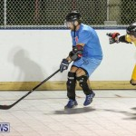 California Golden Seals vs Quebec Nordiques Bermuda Ball Hockey, January 21 2015-77