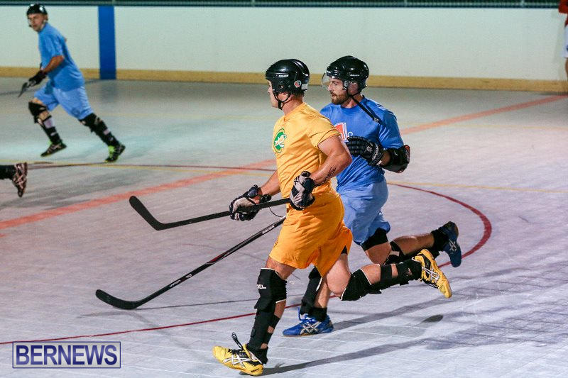 California-Golden-Seals-vs-Quebec-Nordiques-Bermuda-Ball-Hockey-January-21-2015-78