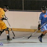 California Golden Seals vs Quebec Nordiques Bermuda Ball Hockey, January 21 2015-79