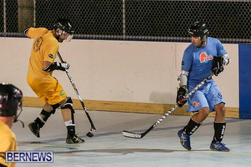 California-Golden-Seals-vs-Quebec-Nordiques-Bermuda-Ball-Hockey-January-21-2015-79