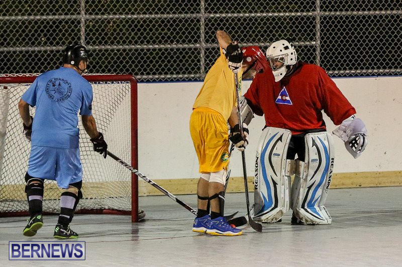California-Golden-Seals-vs-Quebec-Nordiques-Bermuda-Ball-Hockey-January-21-2015-81