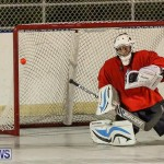 California Golden Seals vs Quebec Nordiques Bermuda Ball Hockey, January 21 2015-9