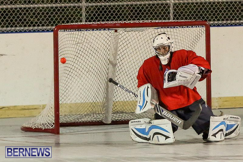 California-Golden-Seals-vs-Quebec-Nordiques-Bermuda-Ball-Hockey-January-21-2015-9