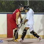 Colorado Rockies vs Toronto Arenas Bermuda Ball Hockey, January 21 2015-10