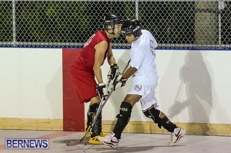 Colorado-Rockies-vs-Toronto-Arenas-Bermuda-Ball-Hockey-January-21-2015-10