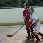 Colorado Rockies vs Toronto Arenas Bermuda Ball Hockey, January 21 2015-11