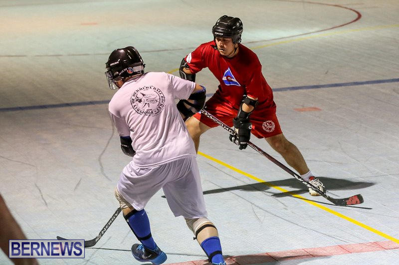 Colorado-Rockies-vs-Toronto-Arenas-Bermuda-Ball-Hockey-January-21-2015-12