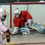 Colorado Rockies vs Toronto Arenas Bermuda Ball Hockey, January 21 2015-13