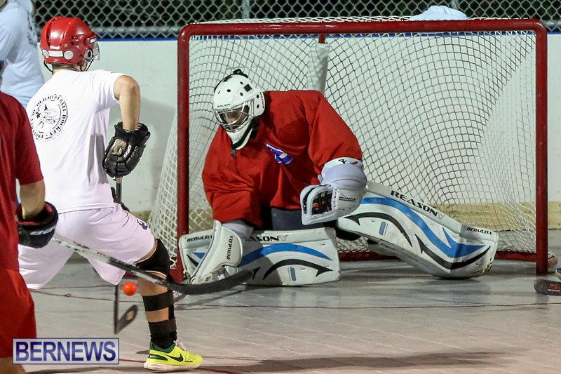 Colorado-Rockies-vs-Toronto-Arenas-Bermuda-Ball-Hockey-January-21-2015-13