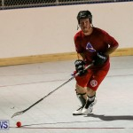 Colorado Rockies vs Toronto Arenas Bermuda Ball Hockey, January 21 2015-15