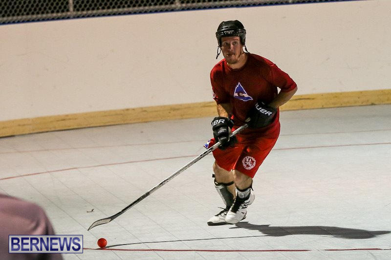 Colorado-Rockies-vs-Toronto-Arenas-Bermuda-Ball-Hockey-January-21-2015-15