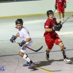 Colorado Rockies vs Toronto Arenas Bermuda Ball Hockey, January 21 2015-16