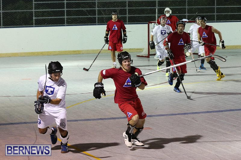 Colorado-Rockies-vs-Toronto-Arenas-Bermuda-Ball-Hockey-January-21-2015-17