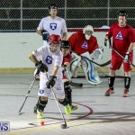 Colorado Rockies vs Toronto Arenas Bermuda Ball Hockey, January 21 2015-18
