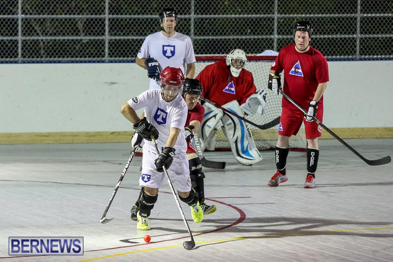 Colorado-Rockies-vs-Toronto-Arenas-Bermuda-Ball-Hockey-January-21-2015-18