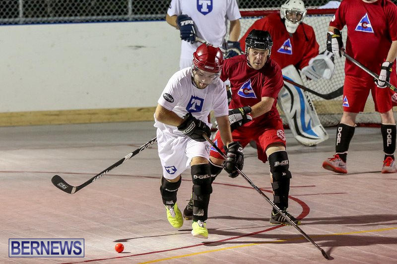 Colorado-Rockies-vs-Toronto-Arenas-Bermuda-Ball-Hockey-January-21-2015-19