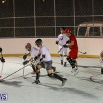 Colorado Rockies vs Toronto Arenas Bermuda Ball Hockey, January 21 2015-2
