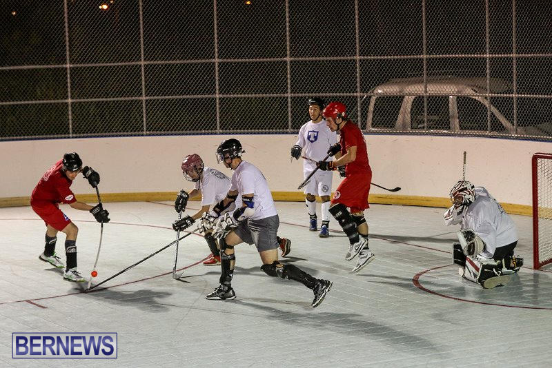 Colorado-Rockies-vs-Toronto-Arenas-Bermuda-Ball-Hockey-January-21-2015-2
