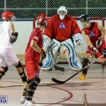 Colorado Rockies vs Toronto Arenas Bermuda Ball Hockey, January 21 2015-21