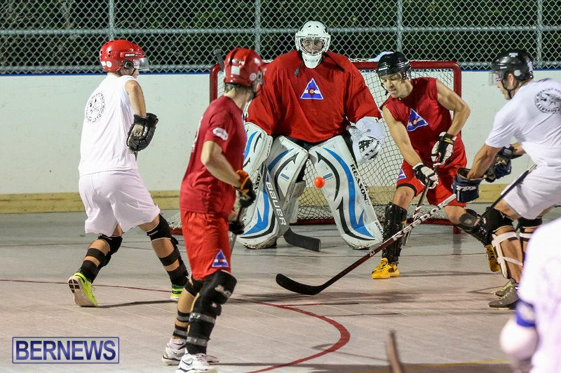 Colorado-Rockies-vs-Toronto-Arenas-Bermuda-Ball-Hockey-January-21-2015-21