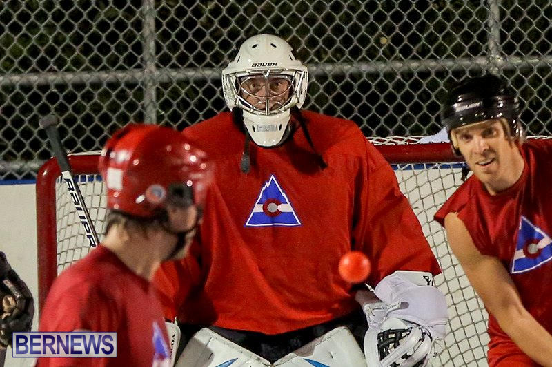 Colorado-Rockies-vs-Toronto-Arenas-Bermuda-Ball-Hockey-January-21-2015-22