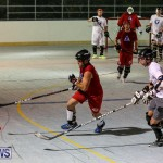 Colorado Rockies vs Toronto Arenas Bermuda Ball Hockey, January 21 2015-23