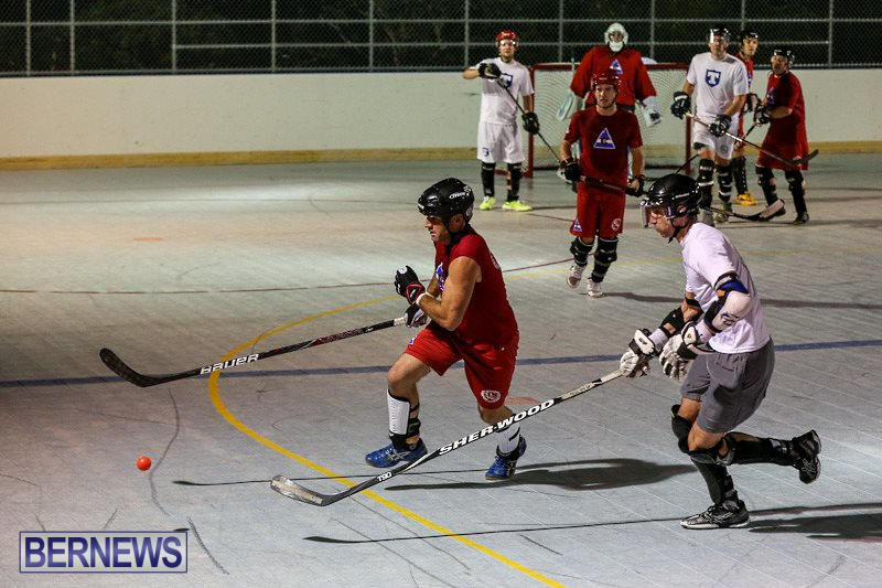 Colorado-Rockies-vs-Toronto-Arenas-Bermuda-Ball-Hockey-January-21-2015-23