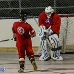 Colorado Rockies vs Toronto Arenas Bermuda Ball Hockey, January 21 2015-24
