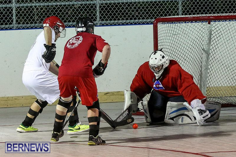 Colorado-Rockies-vs-Toronto-Arenas-Bermuda-Ball-Hockey-January-21-2015-25