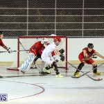 Colorado Rockies vs Toronto Arenas Bermuda Ball Hockey, January 21 2015-26