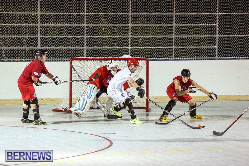 Colorado-Rockies-vs-Toronto-Arenas-Bermuda-Ball-Hockey-January-21-2015-26