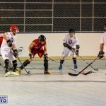 Colorado Rockies vs Toronto Arenas Bermuda Ball Hockey, January 21 2015-27