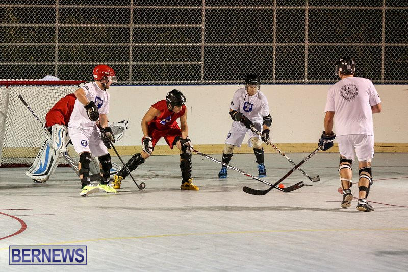 Colorado-Rockies-vs-Toronto-Arenas-Bermuda-Ball-Hockey-January-21-2015-27