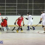 Colorado Rockies vs Toronto Arenas Bermuda Ball Hockey, January 21 2015-28