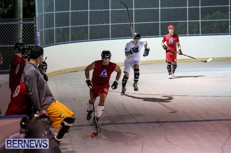 Colorado-Rockies-vs-Toronto-Arenas-Bermuda-Ball-Hockey-January-21-2015-29