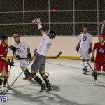 Colorado Rockies vs Toronto Arenas Bermuda Ball Hockey, January 21 2015-3