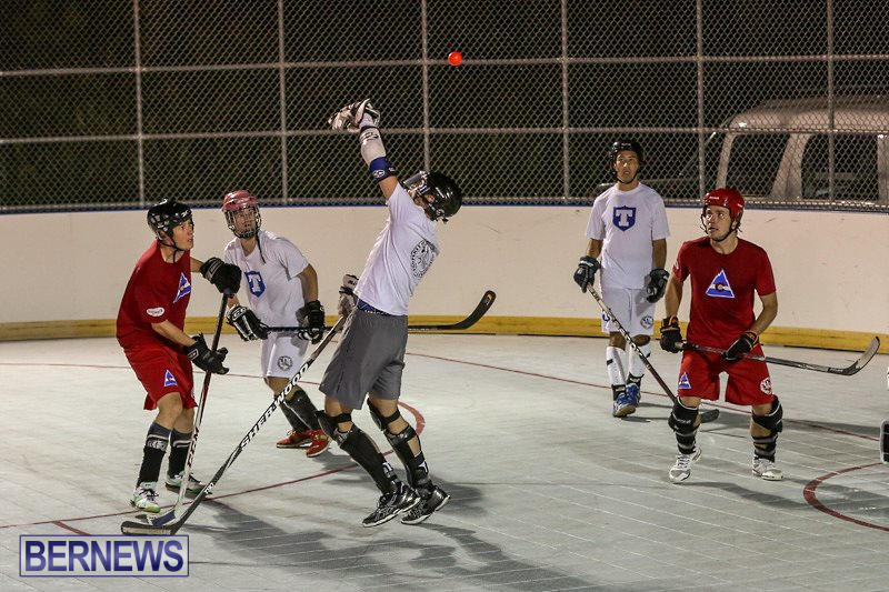 Colorado-Rockies-vs-Toronto-Arenas-Bermuda-Ball-Hockey-January-21-2015-3
