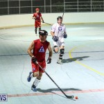 Colorado Rockies vs Toronto Arenas Bermuda Ball Hockey, January 21 2015-31