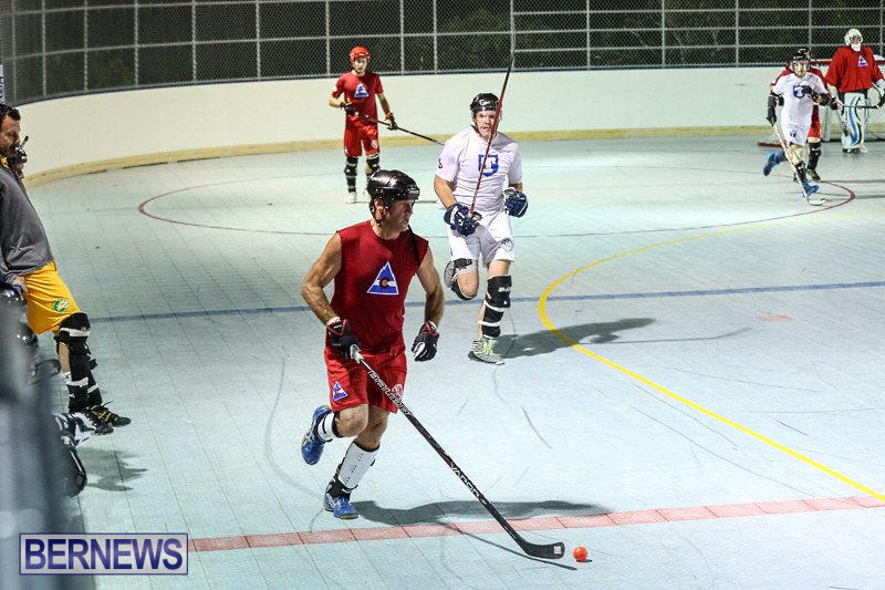 Colorado-Rockies-vs-Toronto-Arenas-Bermuda-Ball-Hockey-January-21-2015-31