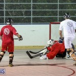Colorado Rockies vs Toronto Arenas Bermuda Ball Hockey, January 21 2015-32