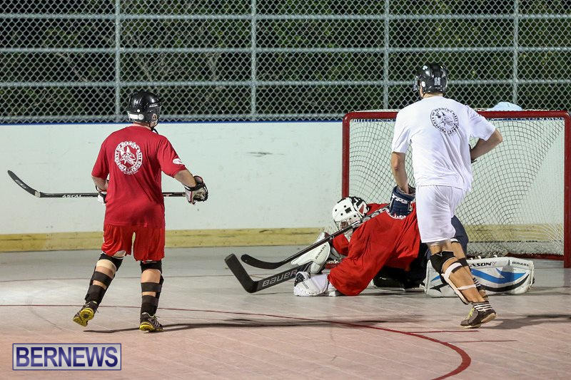 Colorado-Rockies-vs-Toronto-Arenas-Bermuda-Ball-Hockey-January-21-2015-32