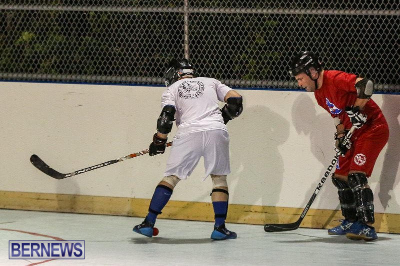 Colorado-Rockies-vs-Toronto-Arenas-Bermuda-Ball-Hockey-January-21-2015-35